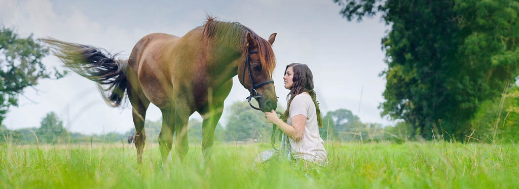 Equine photographer Cheshire and North Wales