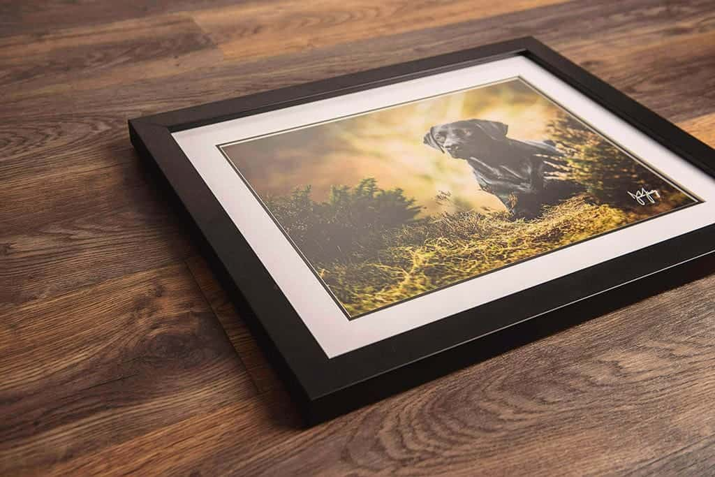 Framed print artwork