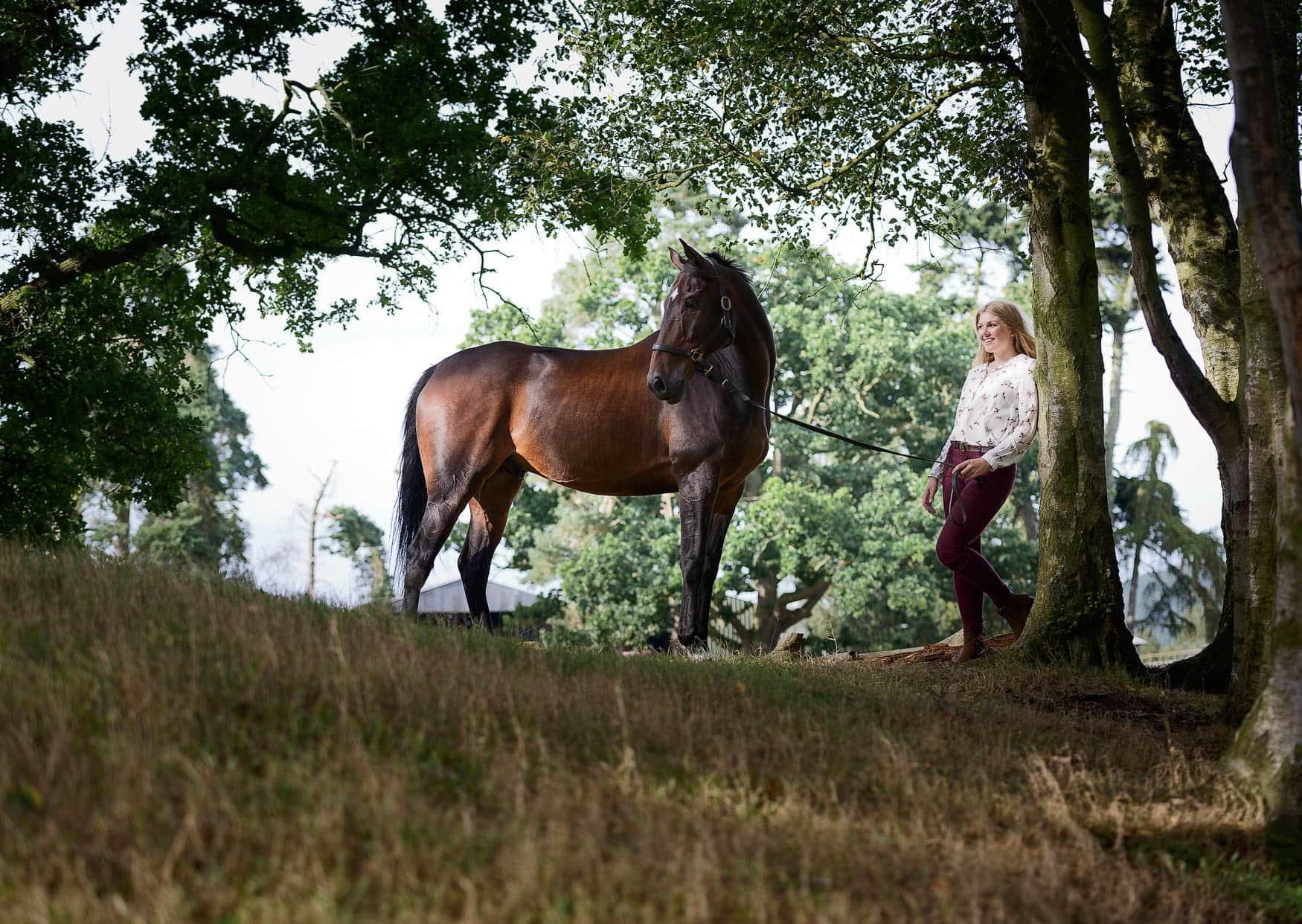 Eventing horse - Shropshire photographer