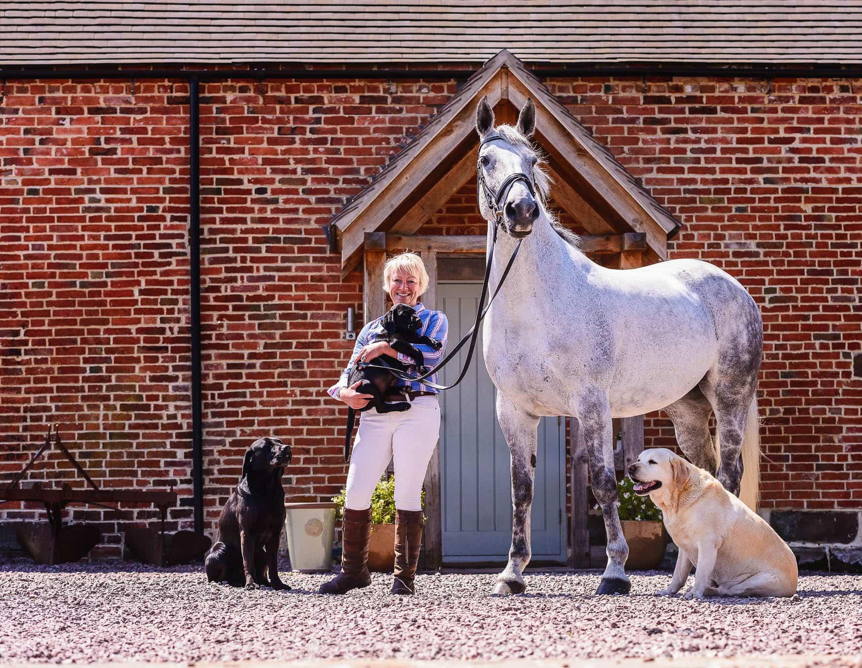Sport Horse - Derbyshire equine photographer