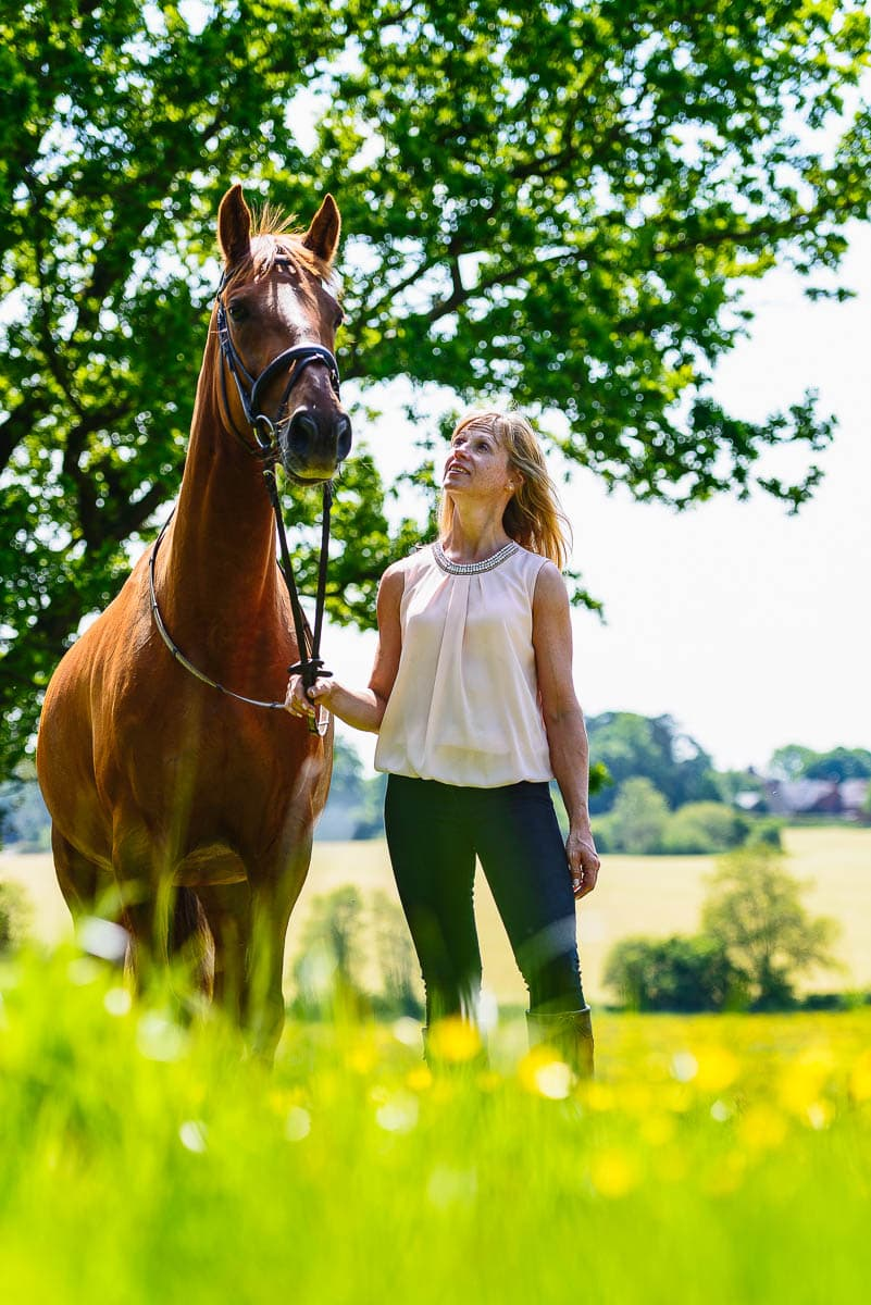 Sport Horse - Derbyshire photographer