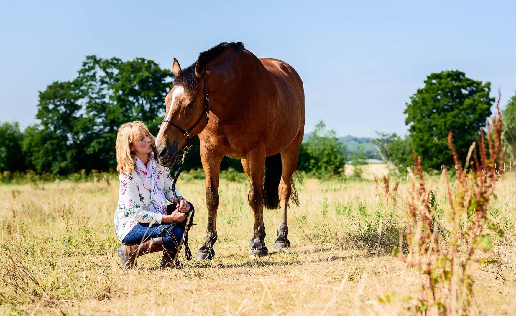 Wrexham horse photographer