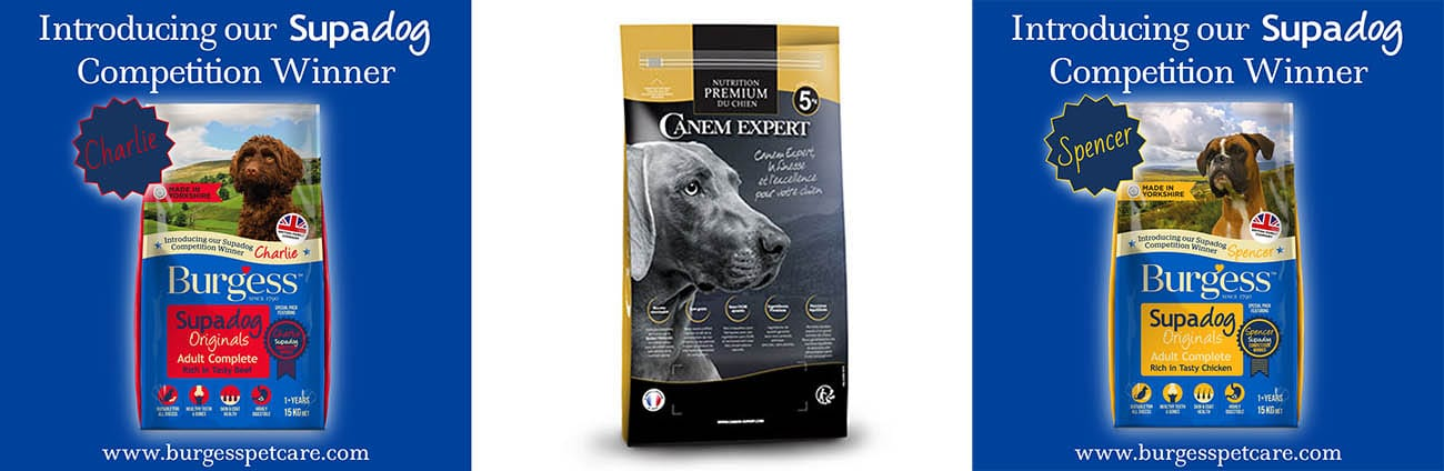 Commercial dog photography specialist - packaging examples